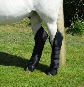 rhinegold elite travel boots chiron equestrian
