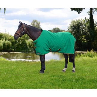 Hy Equestrian StormX 0g turnout rug Chiron Equestrian lampeter